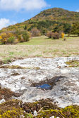 Limestone landscape — Stock Photo