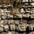 Stone wall in Valladolid - Stock Photo