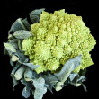Royalty-Free Stock Photo: Romanesco broccoli