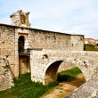 Stock Photo: Castle of Chinchon