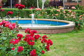 Fountain near dwelling houses — Stock Photo