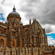 Cathedral in Salamanca — Stock Photo