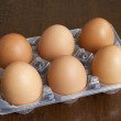 Stock Photo: Six heg eggs