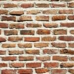 Old brick wall — Stock Photo #32353899