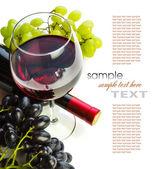 杯红酒与瓶和葡萄 — 图库照片