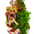 Spices and herbs in a mortar — Stock Photo