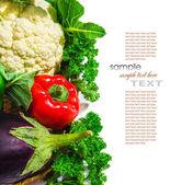 Paprika cauliflower and eggplant — Stock Photo