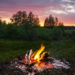 Fireplace in forest at dusk — Stock fotografie
