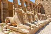 Ancient ruins of Karnak temple in Egypt — Foto de Stock