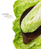 Fresh raw lettuce and herbs — Stock Photo