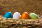 Nest with Easter eggs — Stockfoto
