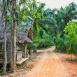 Hut on road in jungle on Phuket in Thailand — Stock Photo #23015642