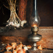 Kerosene lamp — Foto Stock #25233897