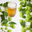 Stock Photo: Hops