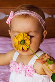 Little girl smelling the perfume of a wild flower — Stock Photo