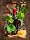 A bottle of wine on the background of the vine — Stock Photo