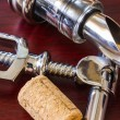 The bottle with corkscrew and wine accessories — Stock Photo #27328759