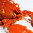 Stock Photo: Boiled crawfish