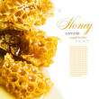 Close-up pieces of honeycomb with honey — Stock Photo #29589371