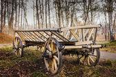 Old village wagon — Stock Photo