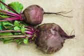 Raw beets — Stock Photo