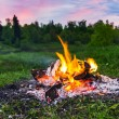 Fireplace in forest at dusk — Stock Photo