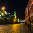 Night view of Moscow near the Kremlin — Stock Photo #29997223