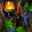 A bottle of red wine on the background of  grapes — Stok fotoğraf