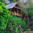 Hut in the jungle by the sea — Foto Stock