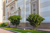 деревья на фоне мечети в шарджа — Стоковое фото