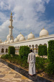 The Shaikh Zayed Mosque — Foto de Stock