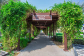 Tunnel of greenery — Stockfoto