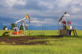 Oil Pumps in Russia — Stock Photo