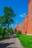 Tower Moscow Kremlin — Stock Photo