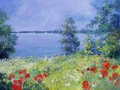 Kolorowe kwiaty na łące lato — Zdjęcie stockowe