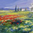 Foto Stock: Painted poppies on summer meadow