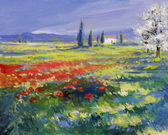 Painted poppies on summer meadow — Stok fotoğraf