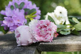 Peonies and garden flowers on wooden planks — Stock Photo