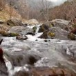 Mountain river rapids in autumn — Stock Video #37579587