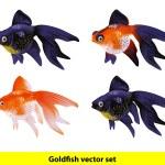 Aquarium Goldfish set. Telescope and Veiltai. — Stock Vector #16770107