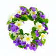Wreath of woodland violets and primula. — Stock Photo #24456897