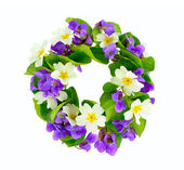 Wreath of woodland violets and primula. — Stock Photo