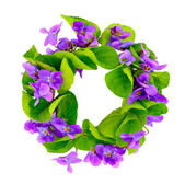 Wreath of woodland violets. — Stock Photo
