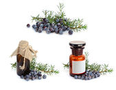 Juniper branch and berries with pharmaceutical bottles. — Stock Photo