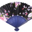Folding fan — Stock Photo #35708911