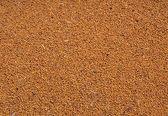 Mustard seed. — Stock Photo