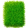 Stock Vector: Grassy rectangle