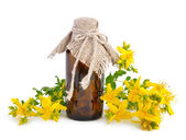 Hypericum with pharmaceutical bottle — Stock Photo