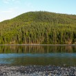 Taiga hills at Steward River near town of Mayo — Stock Photo