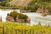 Five Finger Rapids of Yukon River Yukon T Canada — Stock Photo